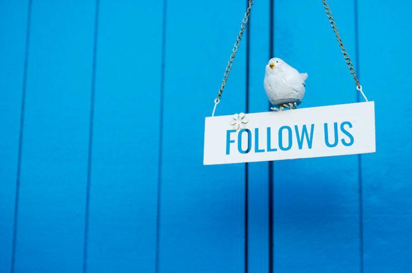 【SNSマーケティングを始めよう】WordPress管理画面からホームページにTwitterとFacebookを埋め込む方法を解説-CHACO-WEBかんたんマニュアル